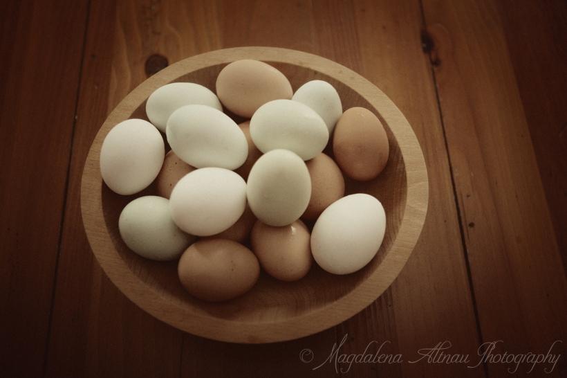 Farm Eggs - Magdalena Altnau