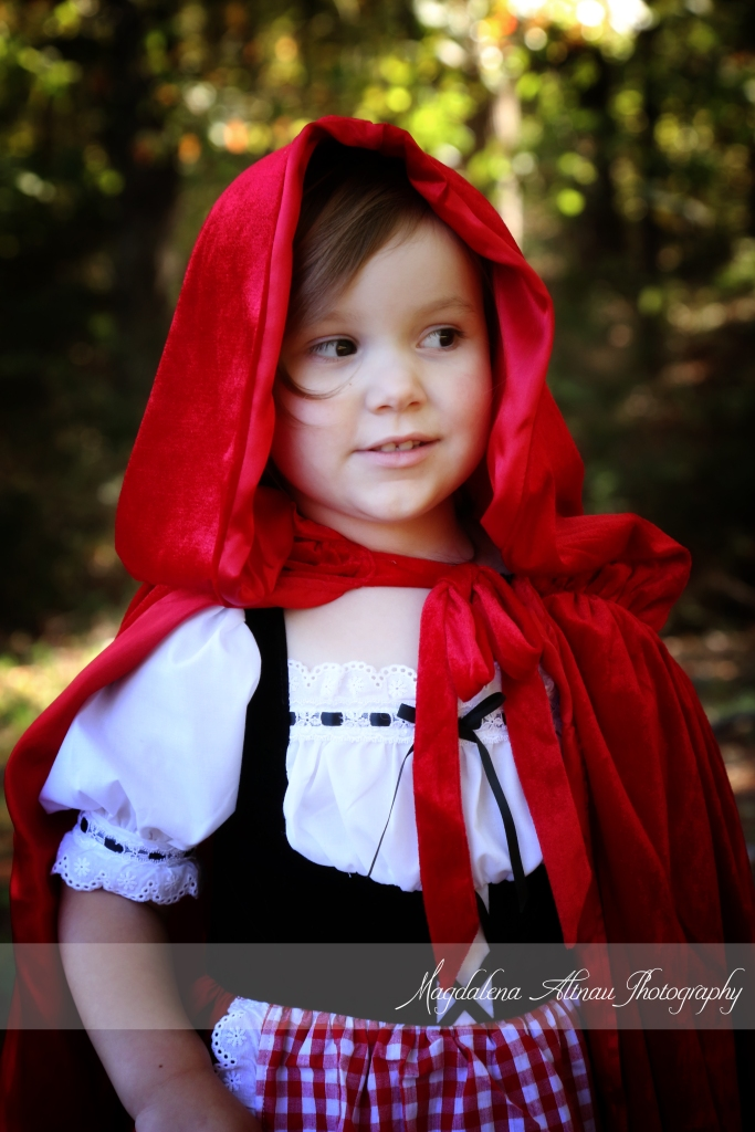 Little Red Riding Hood (2) :: The Bluestocking@Home