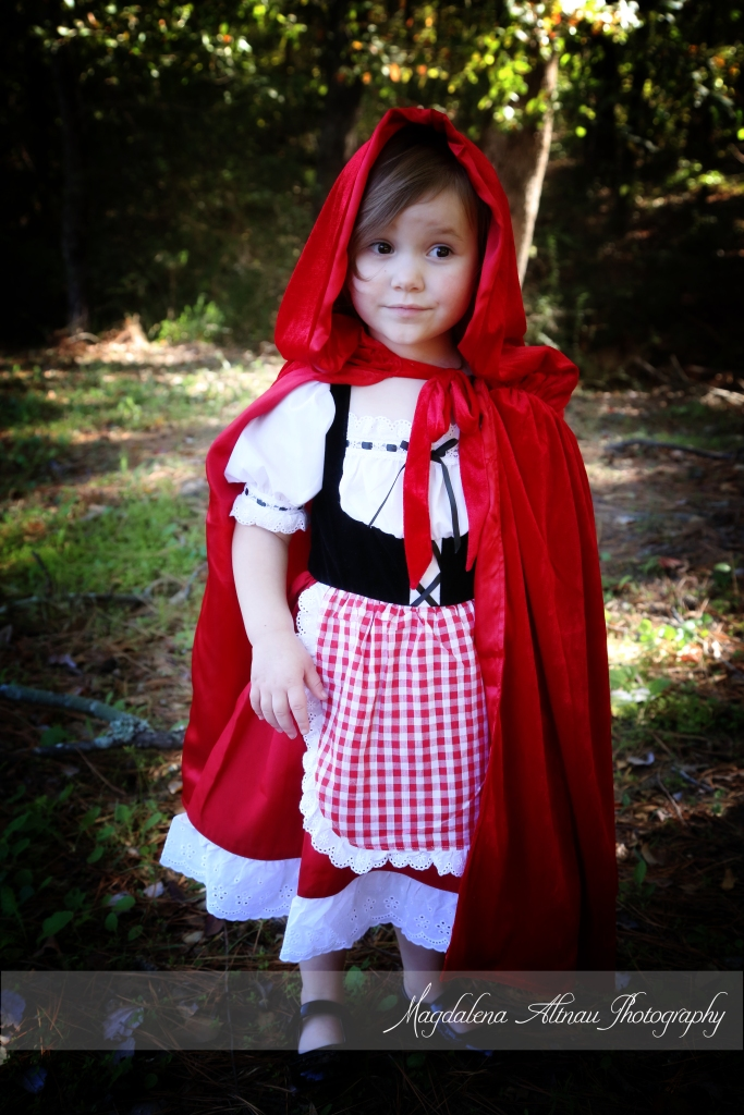 Little Red Riding Hood (3) :: The BlueStocking@Home