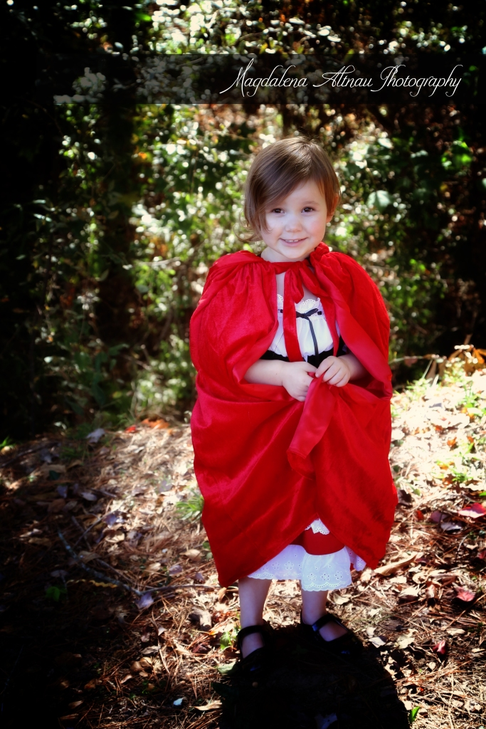 Little Red Riding Hood (4) :: The BlueStocking@Home