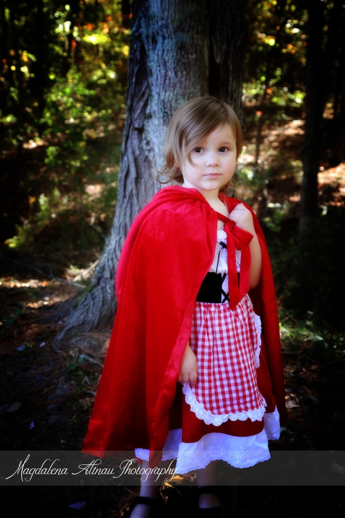 Little Red Riding Hood (5) :: The BlueStocking@Home