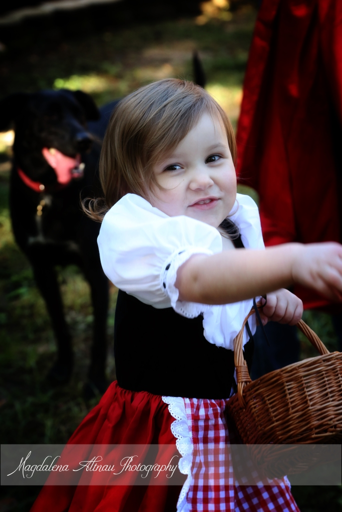 Little Red Riding Hood (6) :: The BlueStocking@Home