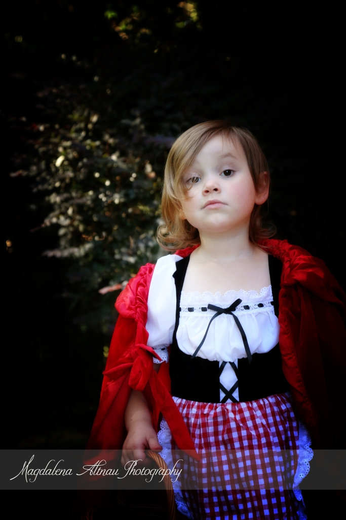 Little Red Riding Hood (7) :: TheBlueStocking@Home