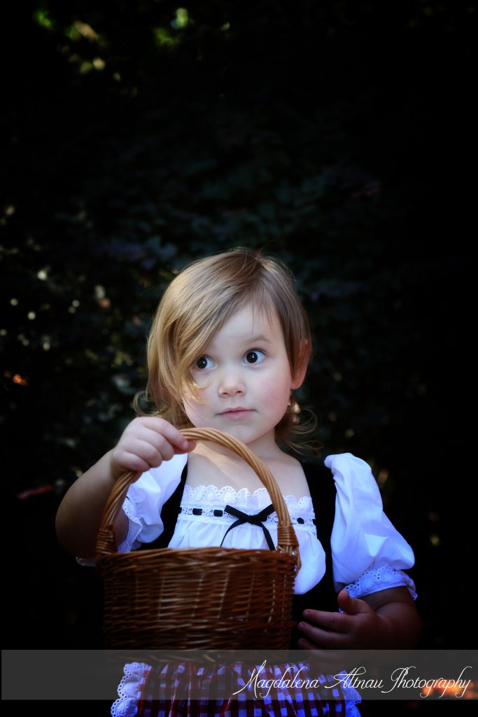 Little Red Riding Hood (8) :: The BlueStocking@Home