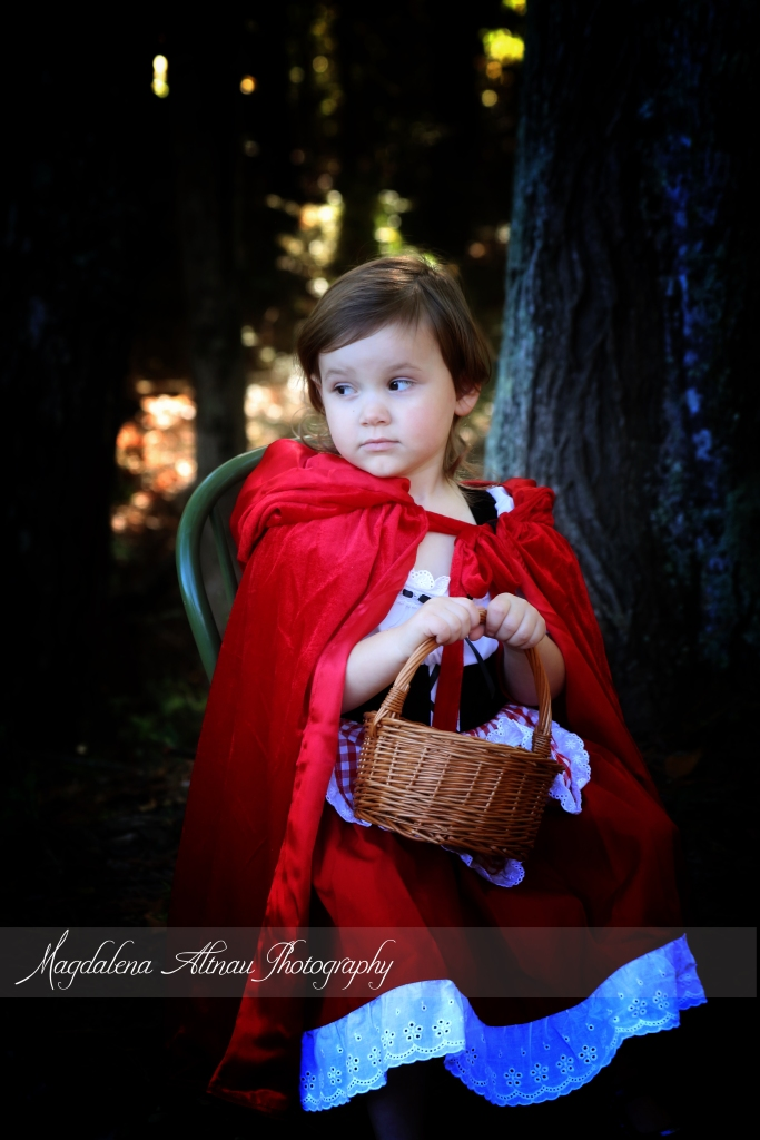 Little Red Riding Hood (11) :: TheBlueStocking@Home