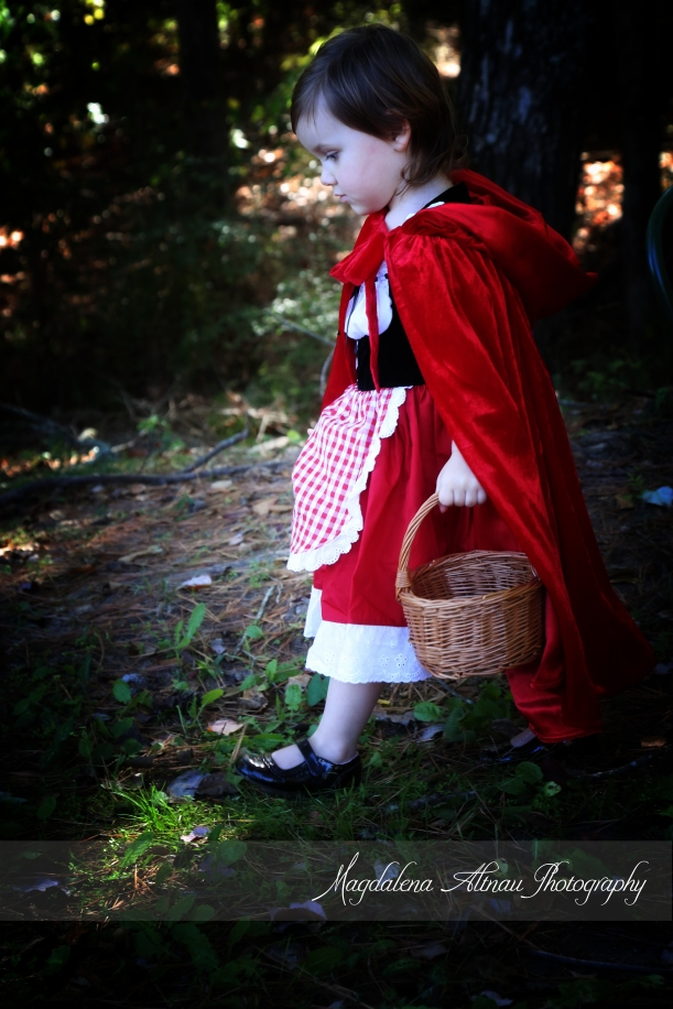 Little Red Riding Hood (12) :: TheBlueStocking@Home
