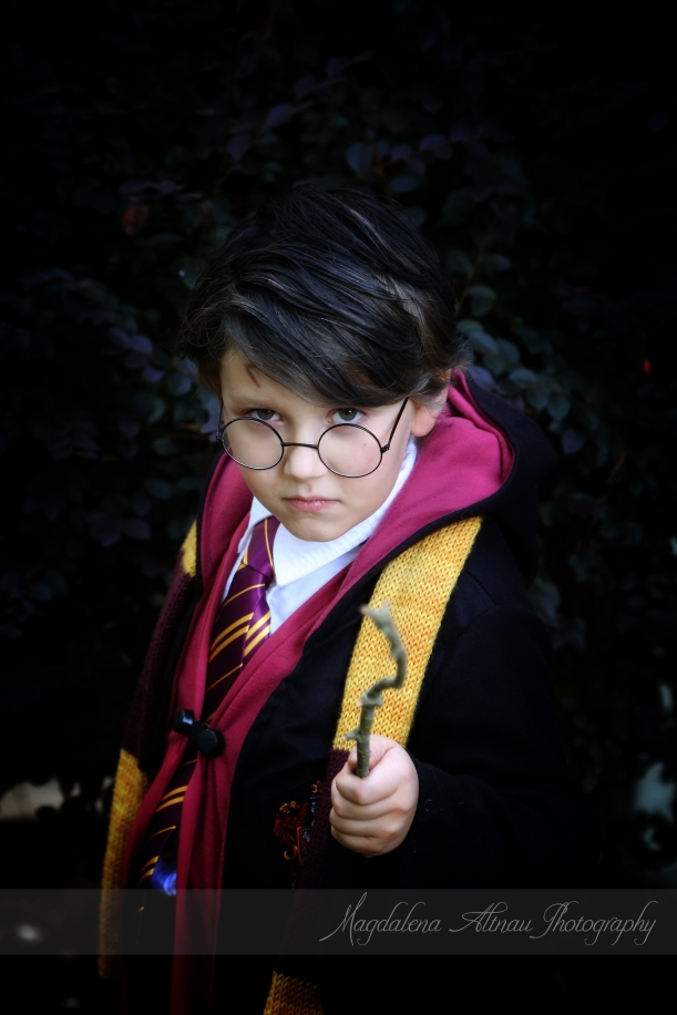 Harry Potter (3) :: TheBlueStocking@Home :: Magdalena Altnau Photography