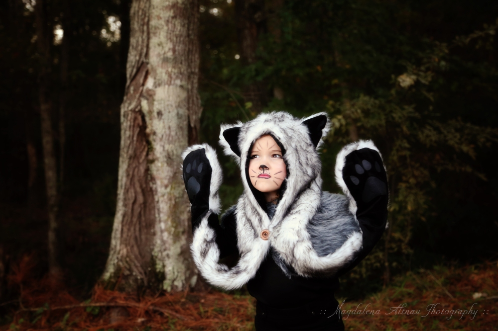 Halloween 2015 - The Big Bad Wolf : III : The Bluestocking At Home