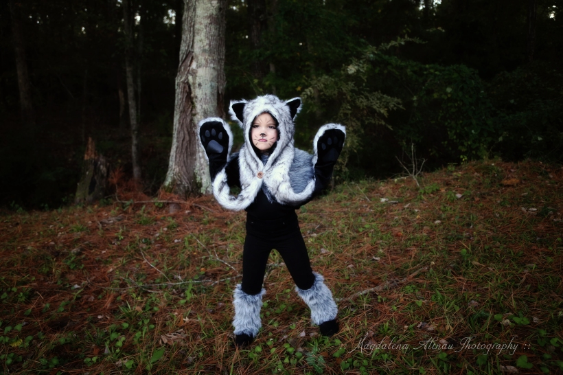 Halloween 2015 - The Big Bad Wolf : V : The Bluestocking At Home